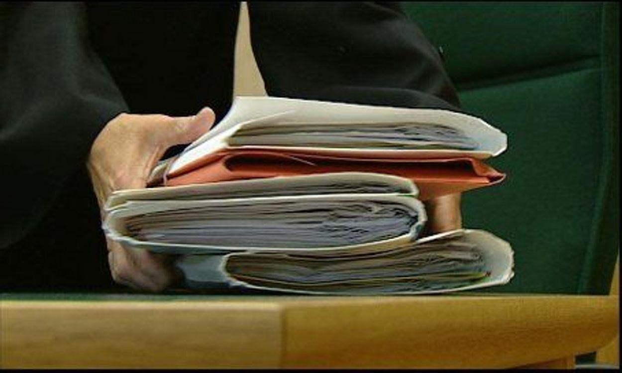 Afbeelding van Officieren van Justitie in de fout (2010)