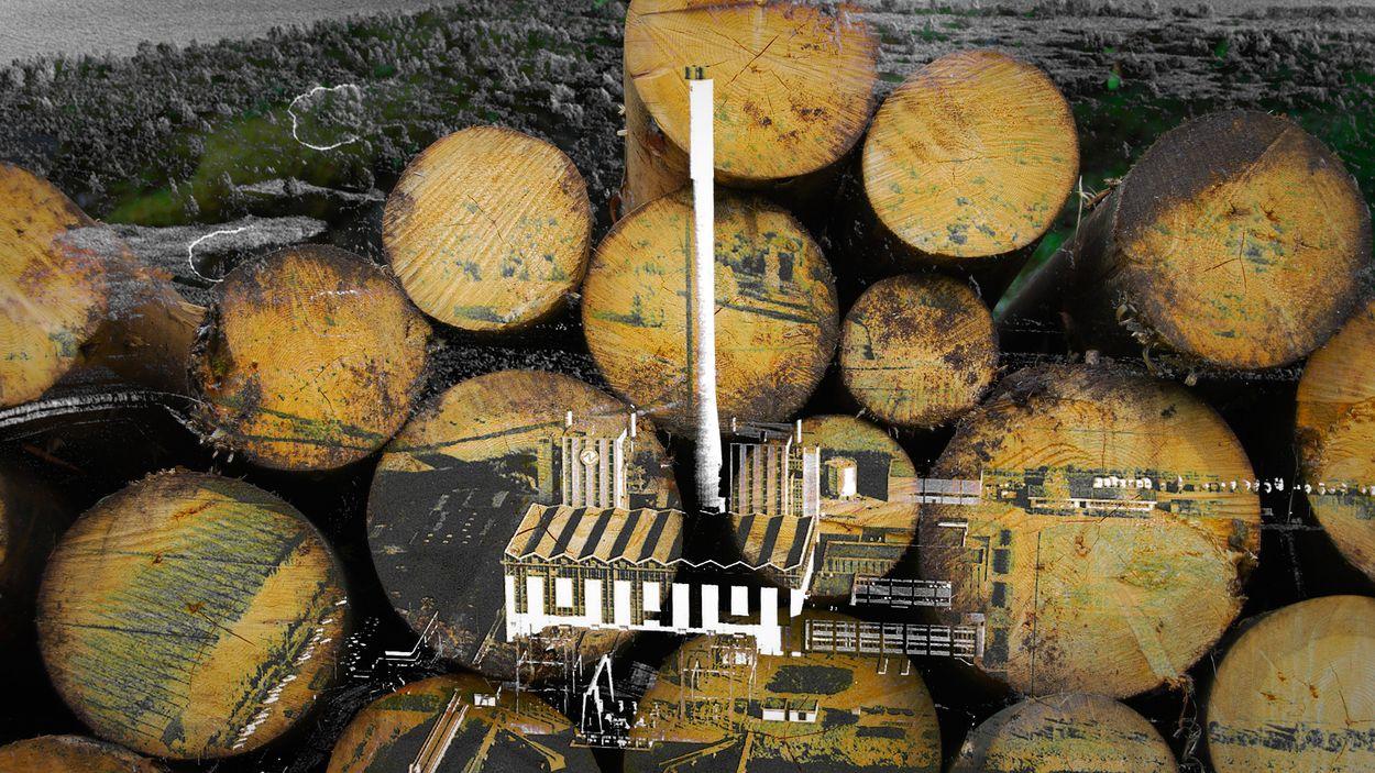 Afbeelding van Strijden tegen biomassacentrale Diemen: 'Ons geld wordt verbrand in de oven'