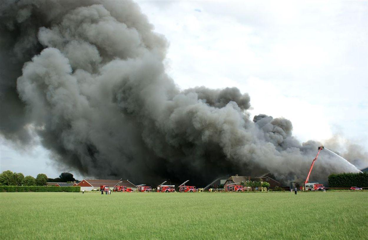 Afbeelding van Hoe kunnen stalbranden voorkomen worden? Dit jaar al 225.000 dode dieren