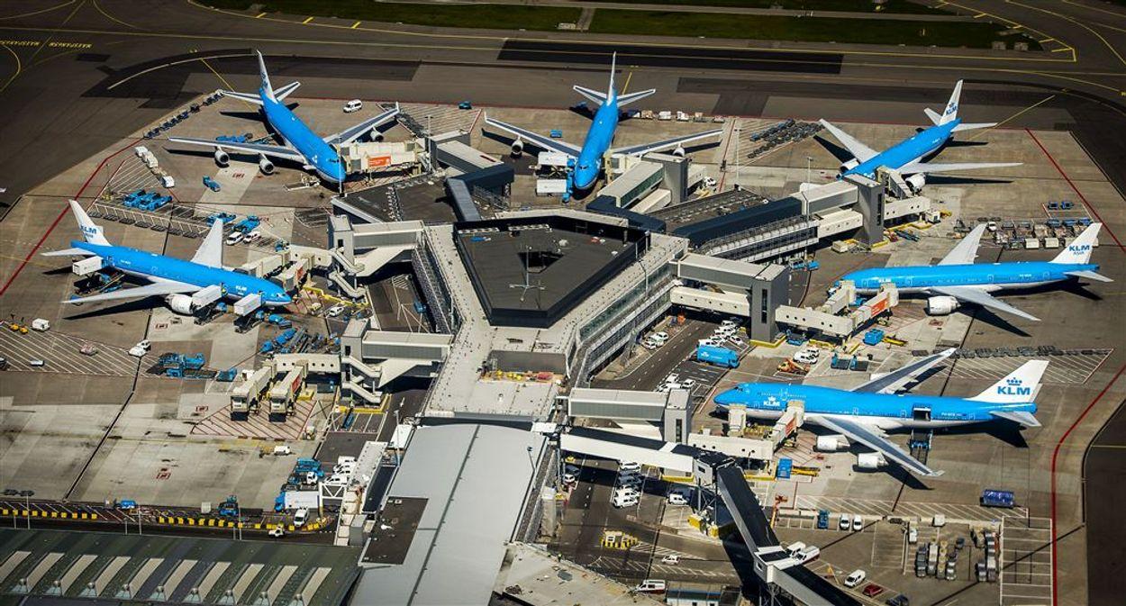 Afbeelding van Stewardess die ziek werd van vliegen, wint rechtszaak van UWV over uitkering