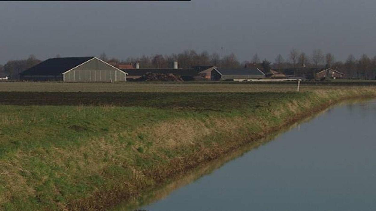 Afbeelding van Het stinkt in Brabant