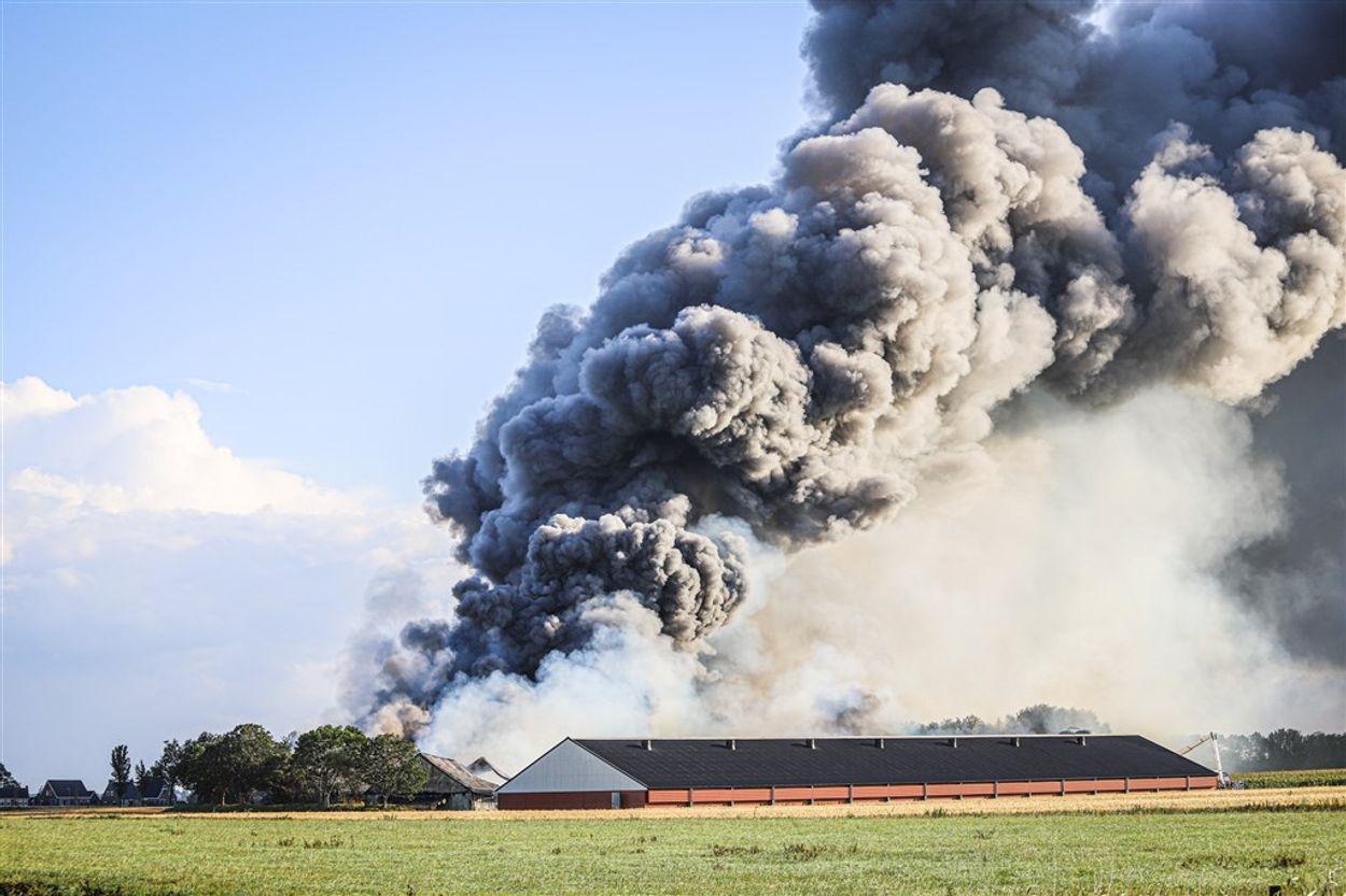 Afbeelding van Nu al meer omgekomen dieren door stalbranden dan in 2018
