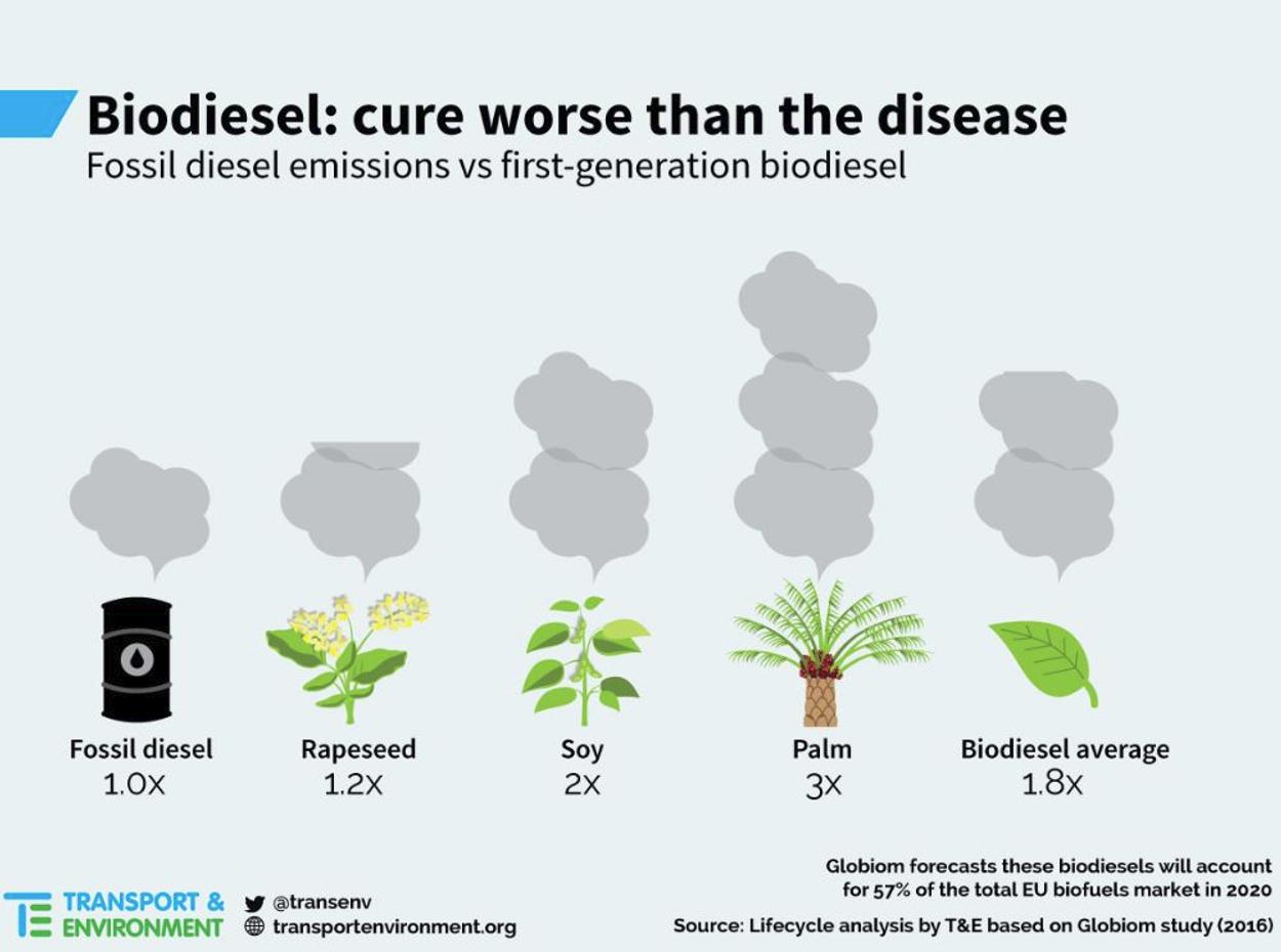 Biodiesel - infographic