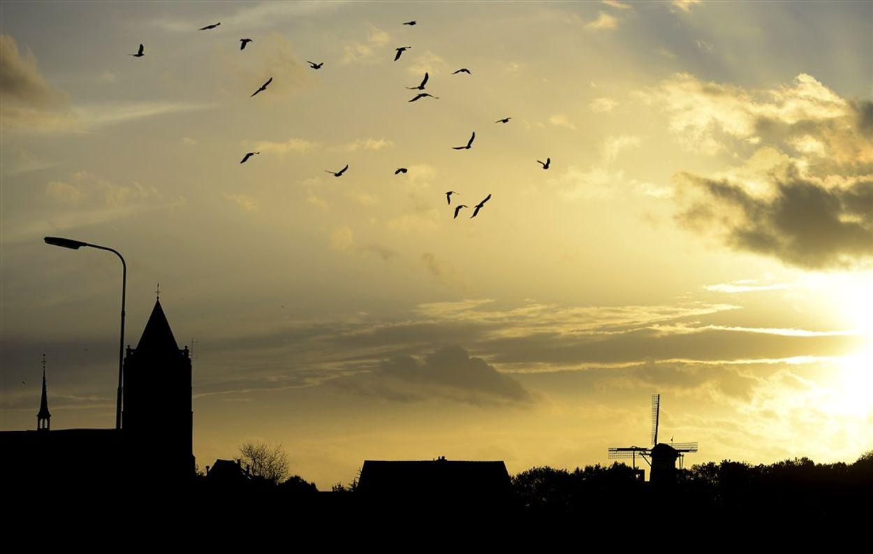 Afbeelding van Nederland afgelopen dertig jaar gemiddeld ruim een graad warmer