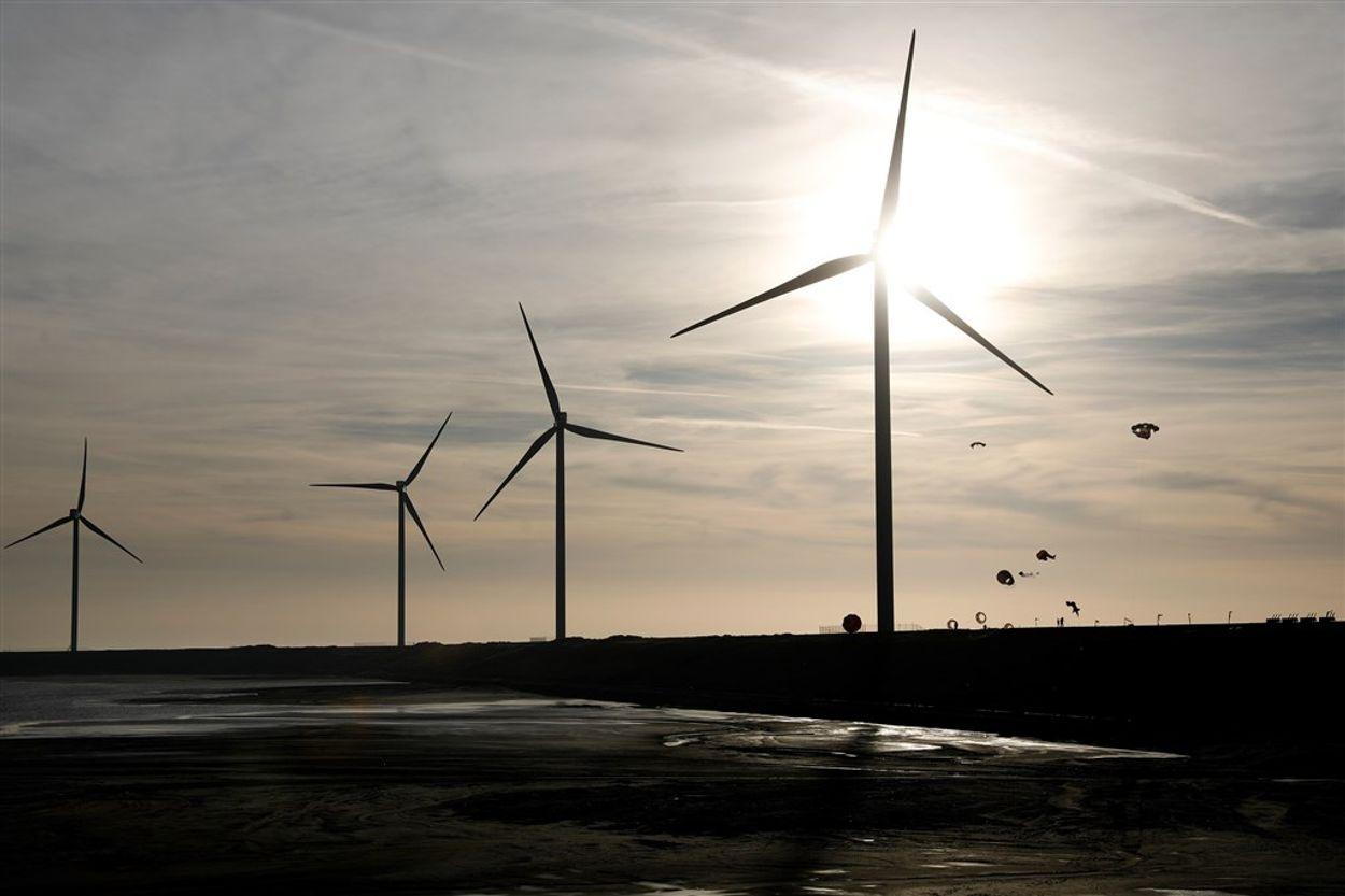 Afbeelding van Deze energieleveranciers scoren het best op groene stroom