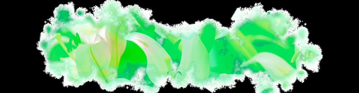 dossiergif-lelies