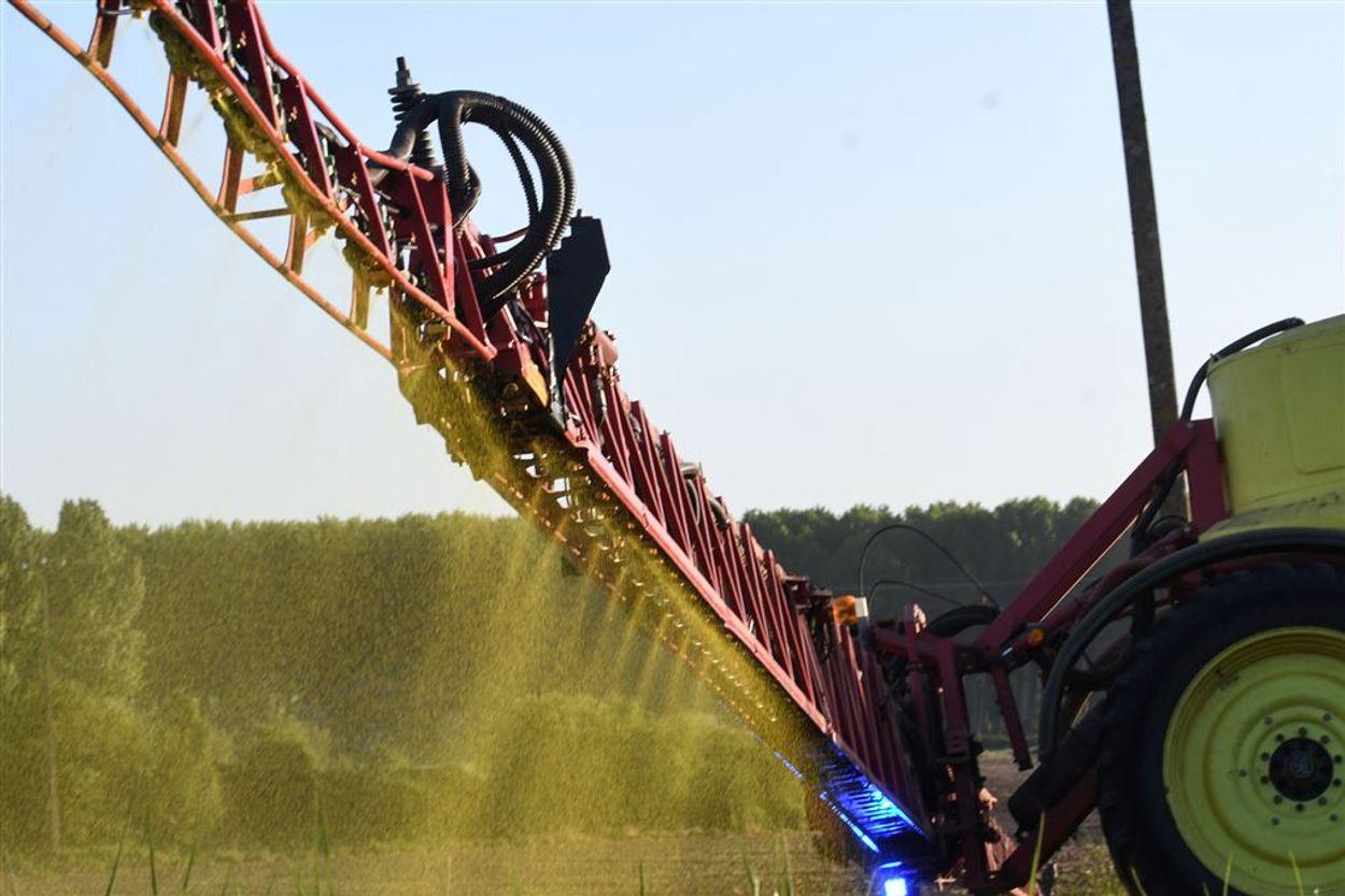 Afbeelding van Monsanto trekt stekker uit kritisch TNO-onderzoek