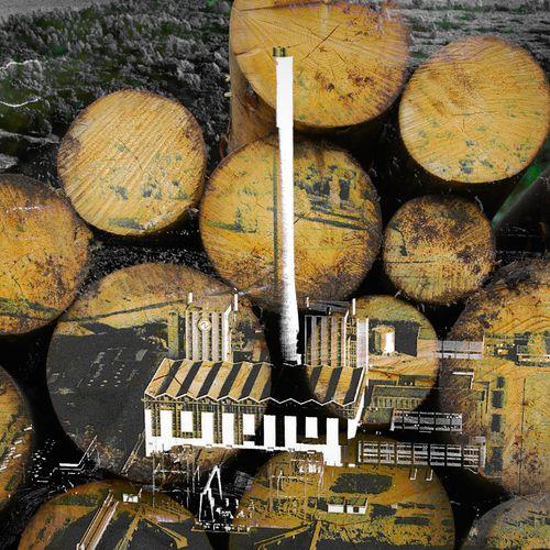 Afbeelding van Rechter: vergunning biomassacentrale Diemen terecht afgegeven