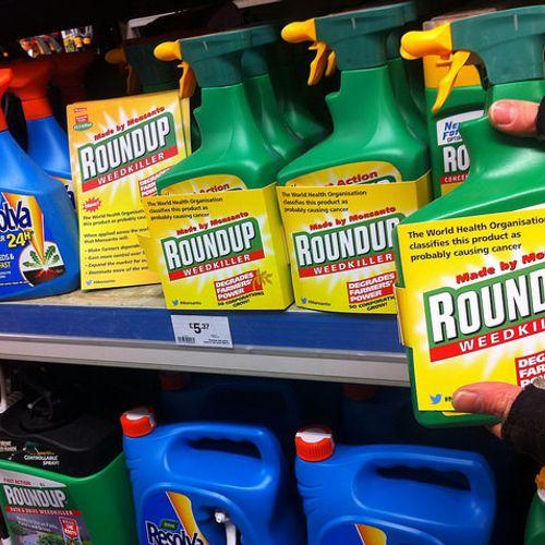 Afbeelding van Bayer treft miljardenschikking in Roundup-zaak Amerika