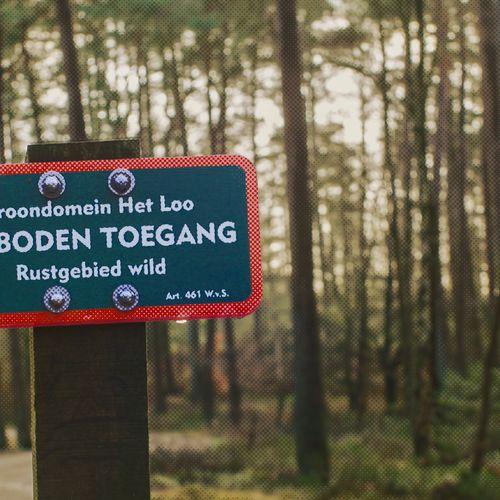 Afbeelding van 4,7 miljoen euro subsidie aan koning Willem-Alexander voor Kroondomein Het Loo is onrechtmatig