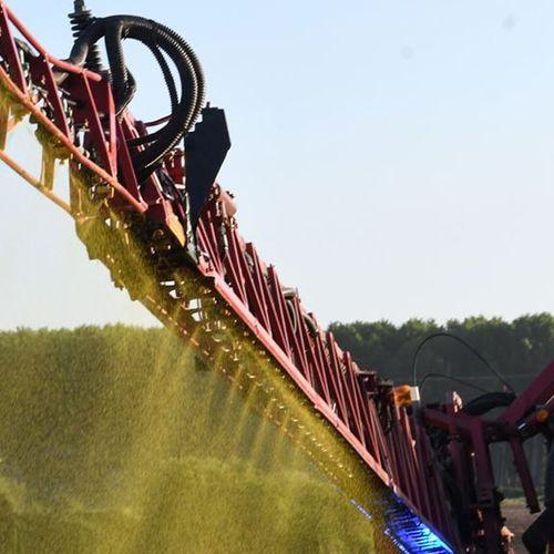 Afbeelding van Definitief verbod op landbouwgif mancozeb
