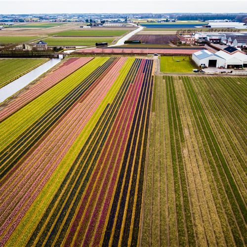 Afbeelding van Merendeel boeren vindt niet dat sector extra natuurbeschermingsmaatregelen hoeft te nemen